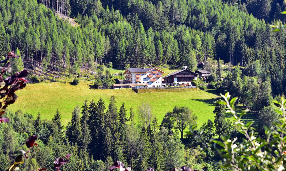 Living in a natural paradise on the farm Planatschhof in Funes